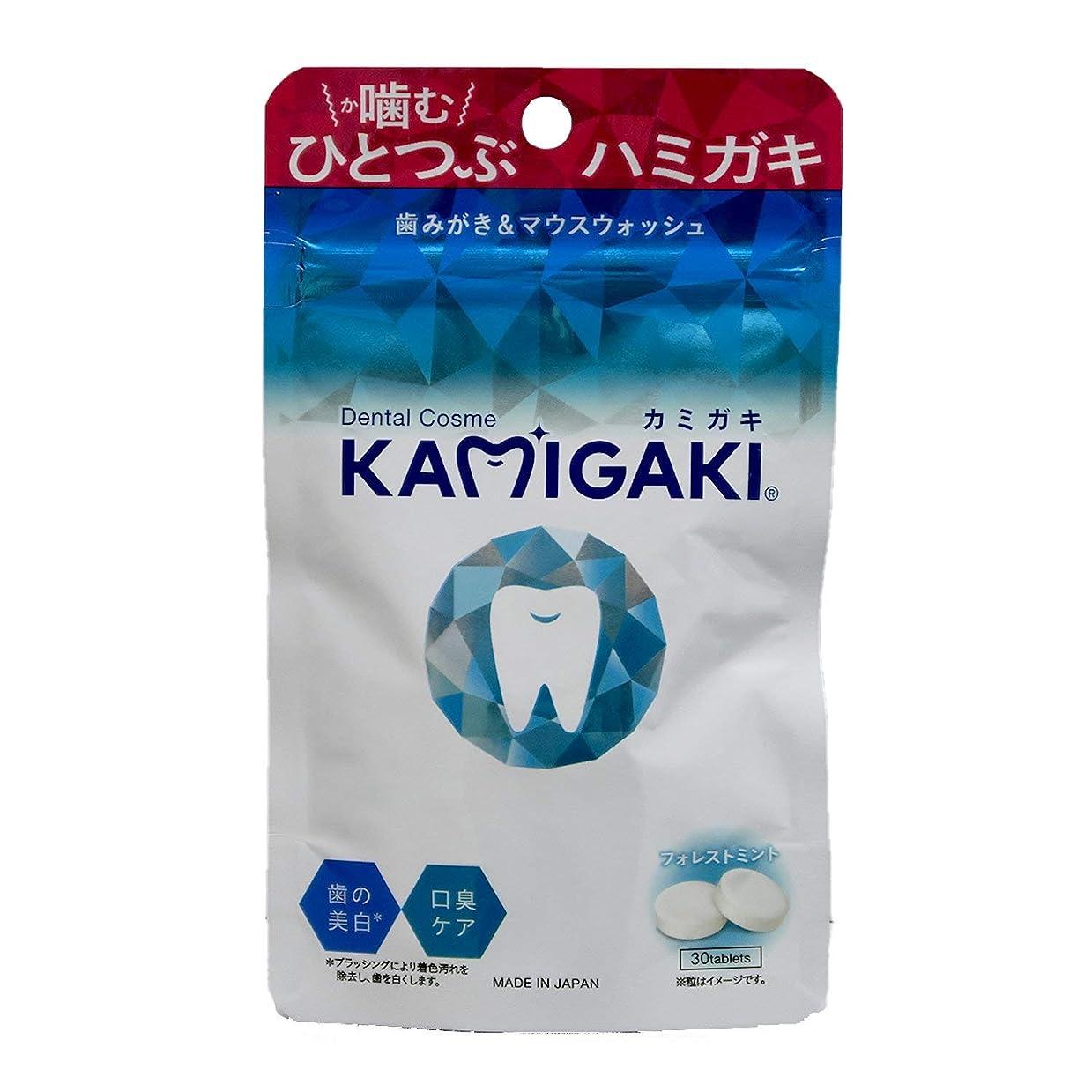 経済罰するお祝いデンタルコスメ カミガキ タブレット型歯磨き粉 フォレストミント 1個