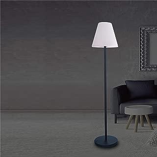 Whiteline Modern Lighting Lumi Floor Lamp Black