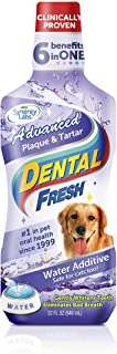 Dental Fresh Advanced Plaque and Tartar 32oz