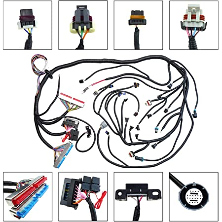 Amazon.com: LS1 Standalone Wiring Harness with 4L60E Transmission Drive By  Cable Throttle Body for 1997-2006 DBC LS1 Engines 4.8 5.3 6.0, with Wiring  Guide Manual: Automotive | Speedway Ls1 Wiring Harness Diagram |  | Amazon