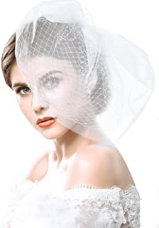Yean Wedding Bridcage Veil with Rhinestones Embellishments Comb Floral Fascinator Netting Short Blusher Veil for Brides (Style-02)