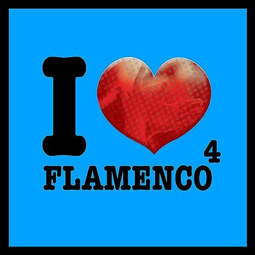 Amazon.com: I Love Flamenco Vol. 4: Various artists: MP3 ...