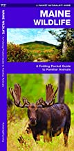 Maine Wildlife: A Folding Pocket Guide to Familiar Animals (Wildlife and Nature Identification)