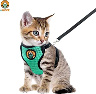 AWOOF Kitten Harness and Leash Escape Proof, Adjustable Cat Kitten Puppy Walking Jacket with Metal Leash Ring, Soft Breathable Small Pet Vest
