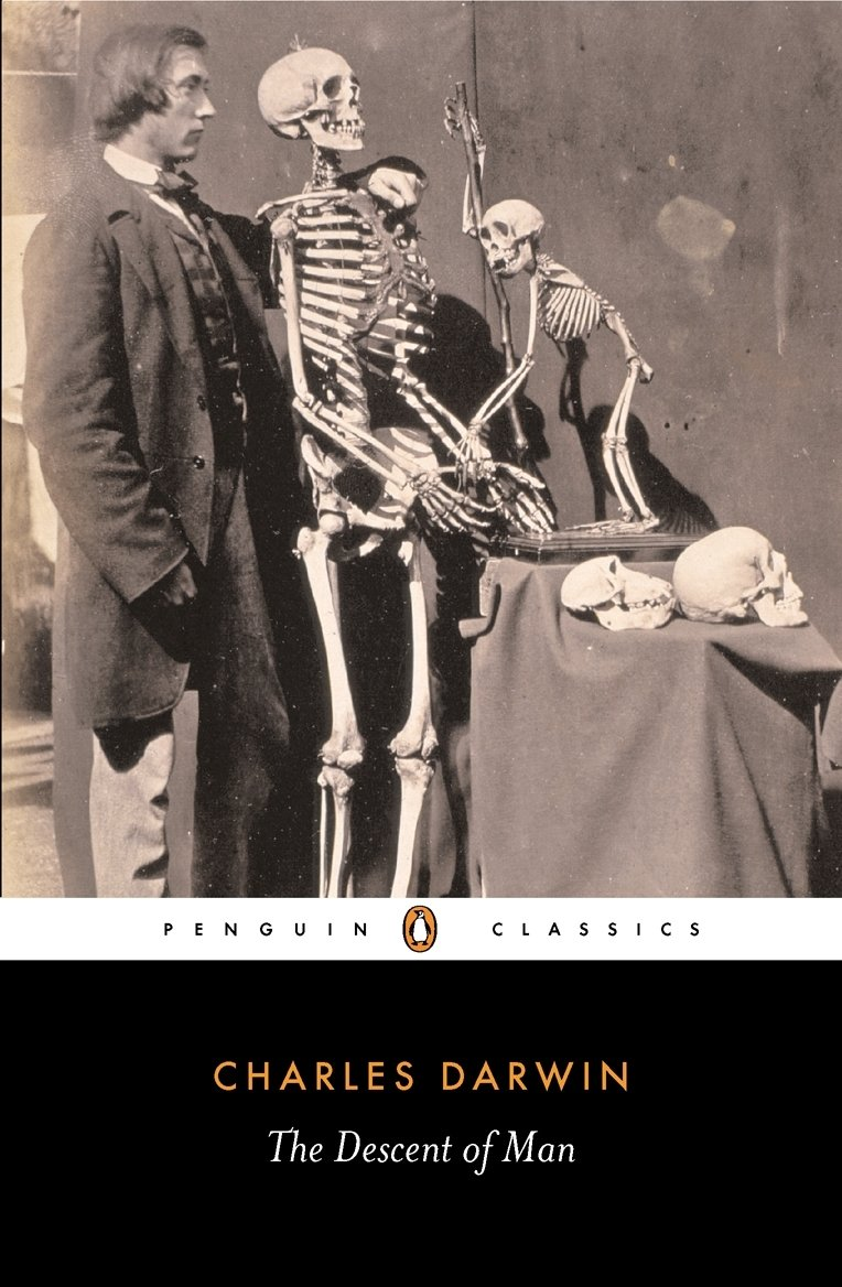 Image OfThe Descent Of Man (Penguin Classics)