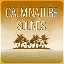 Calm Nature Sounds – Hypnosis & Deep Sleep, Hypnotic Therapy with Subliminal Messages, Cure Insomnia & Quit Smoking
