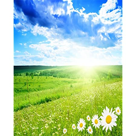 AOFOTO 4x5ft Spring Meadow Photography Backdrop Nature Scenic Photo Studio Background Sunlight Blue Sky Grassland Flower Kid Baby Adult Lover Artistic Portrait Photoshoot Props Video Drape Wallpaper