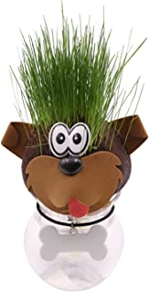 AvoSeedo Grass Head - Funny Fast Growing Grass Head Learning Toy for Kids (Mixed Animal Heads)