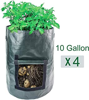 AIPP 4 Pack 10 Gallon Garden Potato Growing Bags with Flap and Handles - Home Farm Planter Planting Bag PE Tub Pouch for Potato, Carrot,Onion&Vegetables Plant