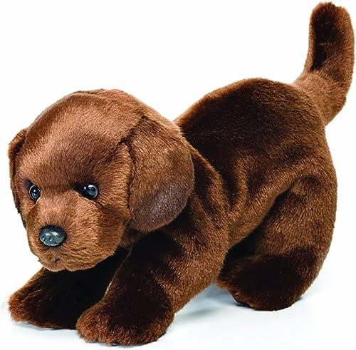 Todos los productos obtienen hasta un 34% de descuento. Nat and and and Jules Plush Toy, Chocolate Labrador, Large  muy popular