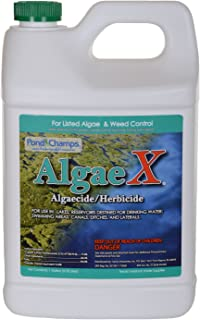 Pond Champs 11700 Algae X 1 Gallon Algaecide/Herbicide