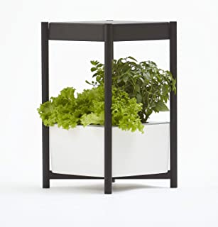 miracle gro hydroponics solution