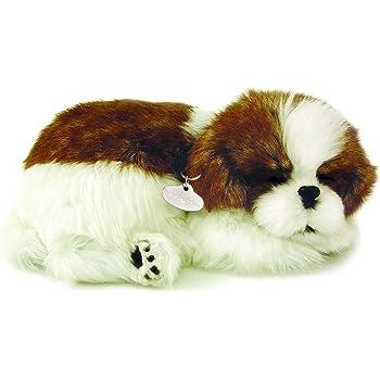 Perfect Petzzz 4924 Plusch Hund Shih Tzu Amazon De Spielzeug