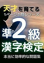 1ページ1問ドリル 漢字検定準2級: 天才を育てる! (単問図書)