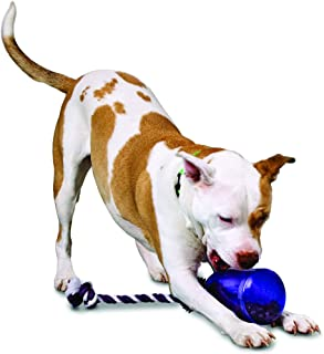PetSafe Busy Buddy Tug-A-Jug Meal-Dispensing Dog Toy Use with Kibble/Treats