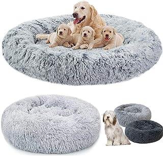 Amazon Co Uk Dog Bunk Bed