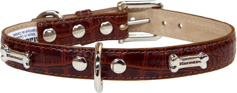 blueemax Genuine Leather Crocodile Cow Dog Collar with Bone Stud, 3 4Inch by 12Inch, Tan