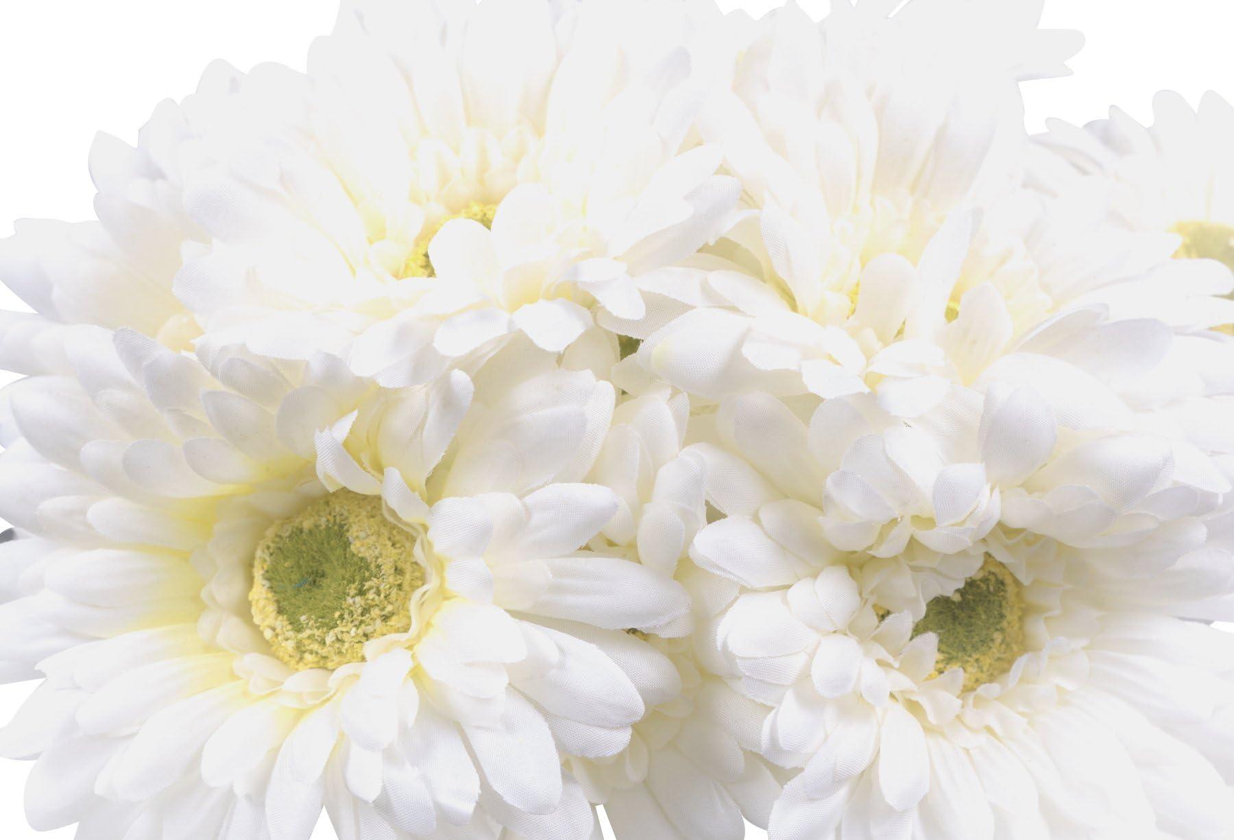 Three 9 White Gerbera Daisies