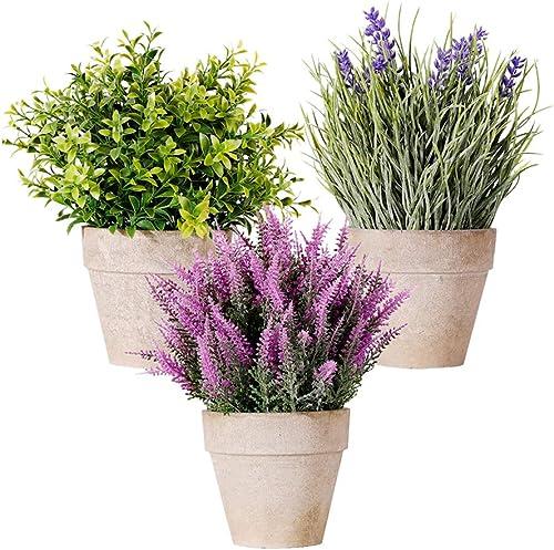 Mejor valorados en Plantas artificiales & Opiniones útiles de ...