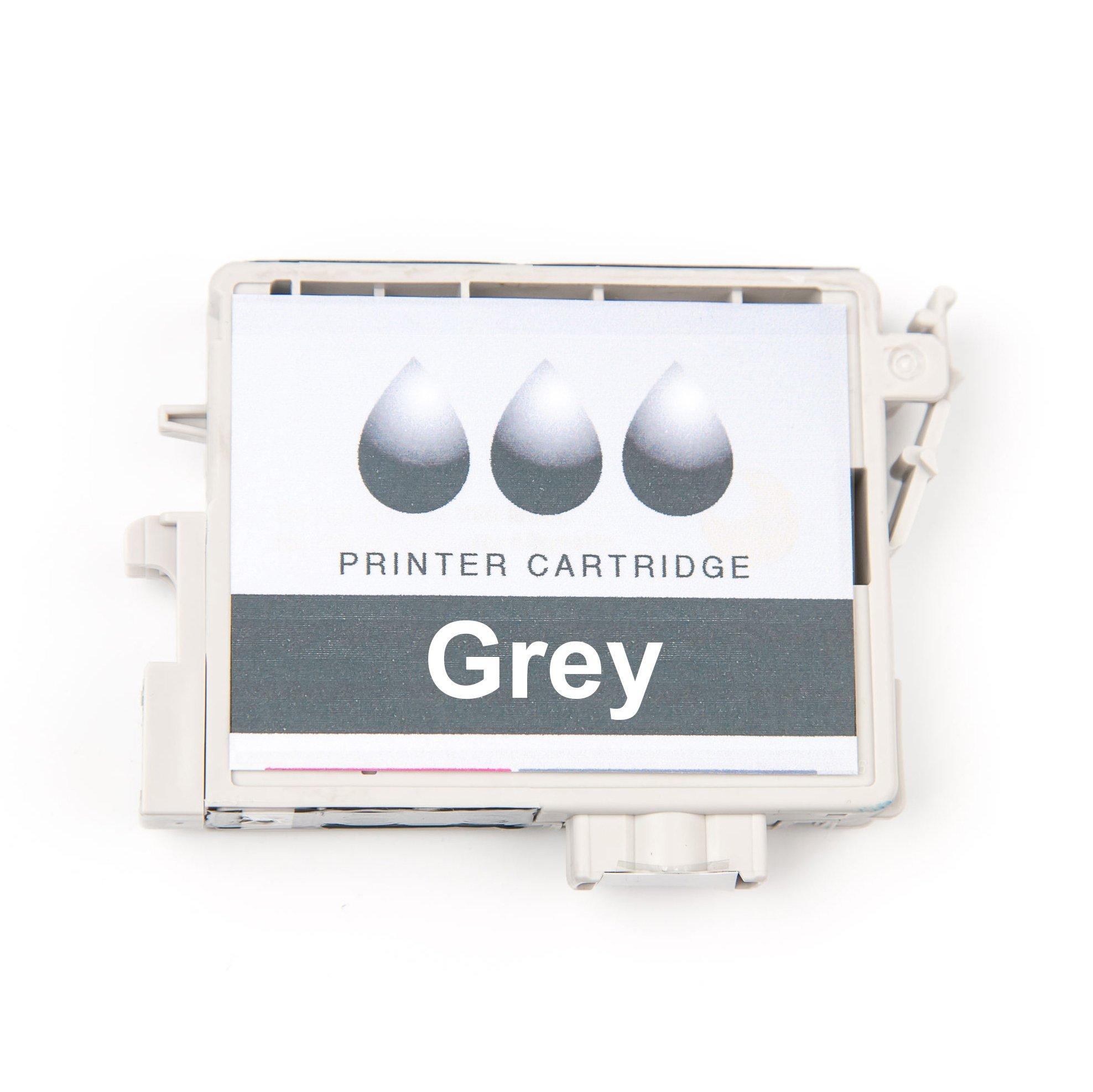 Epson C13T642900 - Cartucho de tinta, color negro claro: Epson ...