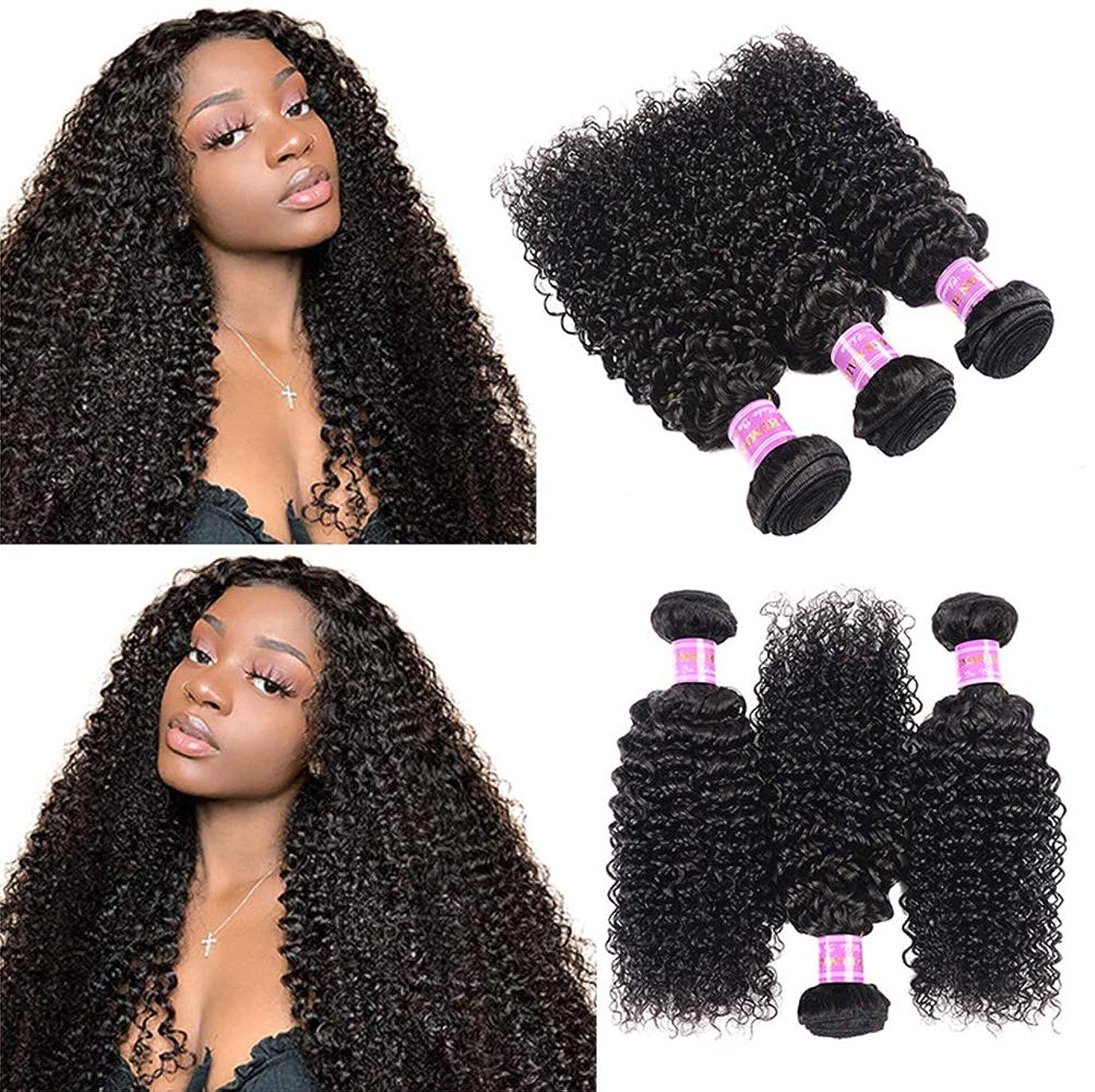野球心のこもった空白女性150%密度ブラジルの水の波髪の束100%の未処理のバージンレミー人間の毛髪の拡張子1バンドル変態巻き毛