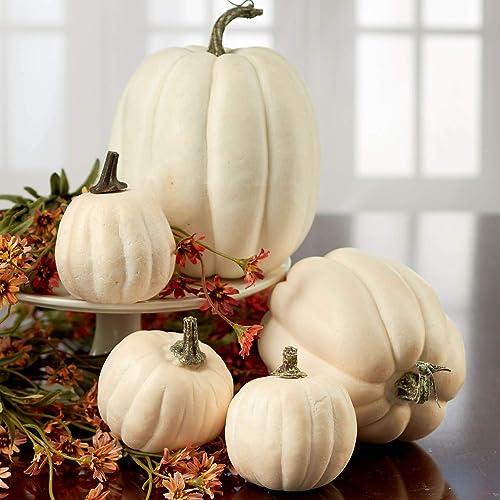 White Pumpkin Decor: Amazon.com