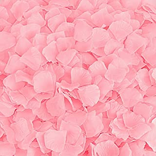 BESKIT 3000 Pieces Silk Rose Petals Artificial Flower Petals for Valentine Day Wedding Flower Decoration (Pink)