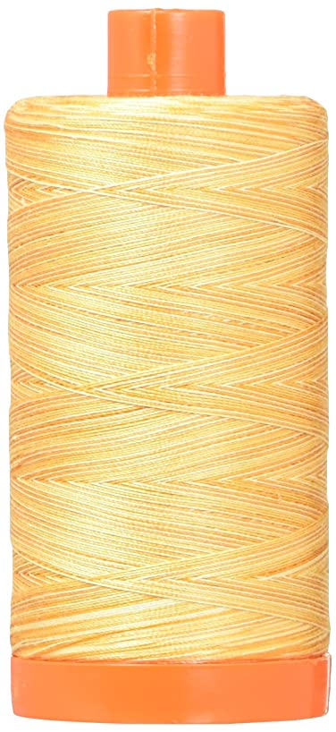 Aurifil Mako Cotton Embroidery Thread 50wt 1422yds Variegated