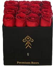 Premium Roses  Real Roses That Last a Year   Fresh Flowers  Roses in a Box (Black Box, Medium)
