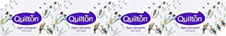 Quilton Hypo Allergenic 2 Ply 250 Facial Tissues Pack, 12 packs