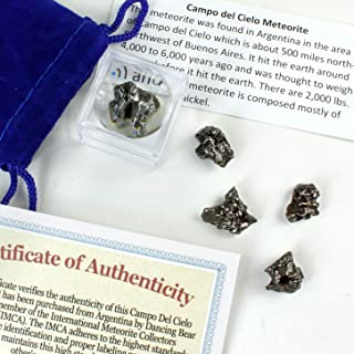 Dancing Bear Brand Meteorite from Space, 6 pcs Campo del Cielo from Argentina/ Educational Card & Magnifying Box, Dancing ...