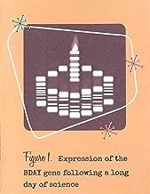 Birthday Gel Electrophoresis Cake Science Card (4.25