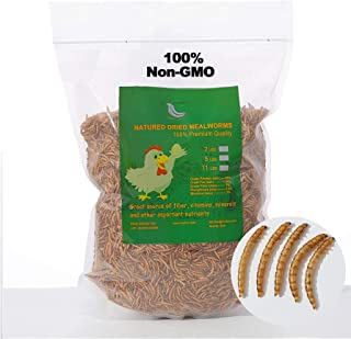 WORKPOINT Non-GMO Dried Mealworms, 100% Natural Large...