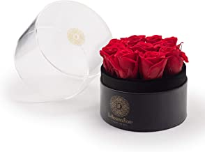 Bellissima Fiore RED Preserved Real Rose | Acrylic Display Box | Romantic Gift | Home Decor, Anniversary, Birthday, Valentine's Day, Mother's Day, Wedding, Christmas | Handmade | Eternal Flower