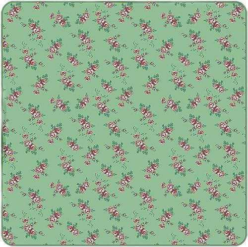 Tapis de Pique-Nique imperméable à l'eau portatif en Plein air Tapis Anti-humidité épais Matelas à Ressorts Herbe Mat Pique-Nique Tissu
