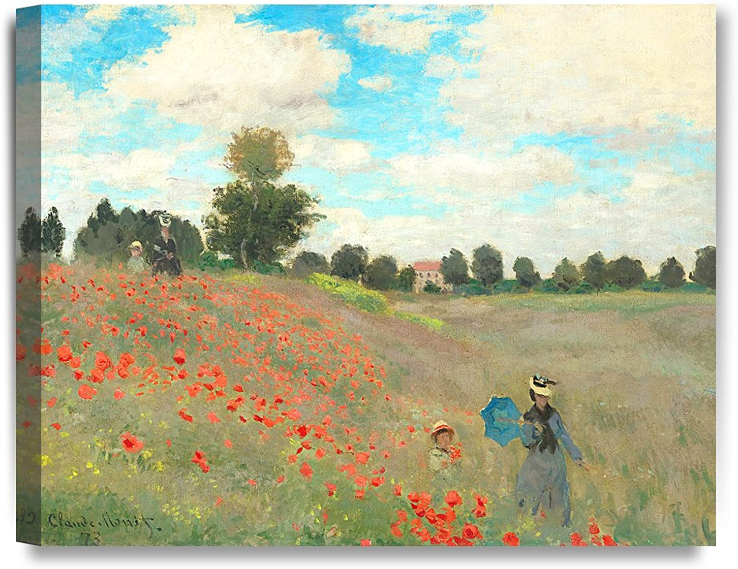 DECORARTS Poppies at silvereuil 1873 Claude Monet Art Art Art Reproduction. Giclee Canvas Prints Wall Art for Home Decor 20x16 00760a