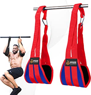 DMoose Fitness Hanging Ab Straps for Abdominal Muscle Building and Core Strength..