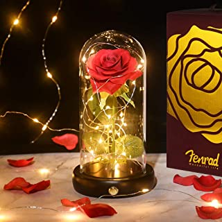 Beauty and The Beast Rose Kit, Enchanted Red Silk Rose Artificial Flower in Glass Dome and LED Lights Wooden Base Romantic...