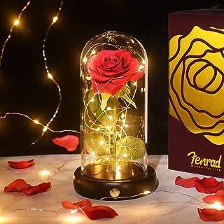 Rose Enchantée, La Belle et la Bête Rose Eternelle Romantique, Fleurs vec Lumières LED avec Dôme en Verre et Base en Bois,...