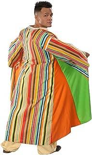 coat of many colors costume