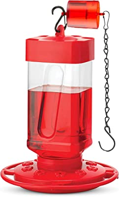 SEWANTA Hummingbird Feeders for Outdoors 32 oz - First Nature Hummingbird Feeder Include Perch with 10 Feeding Ports - Bundled with Ant Guard And SEWANTA Bird Feeder Hanging Chain 9.5 Inches