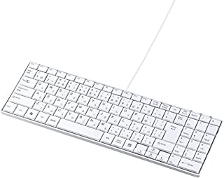 サンワサプライ USBスリムキーボード パンタグラフ テンキー有り ホワイト SKB-SL17WN
