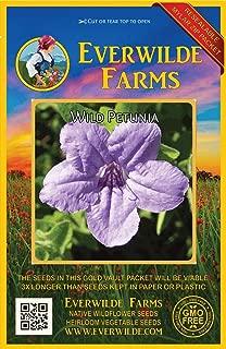 Everwilde Farms - 100 Wild Petunia Native Wildflower Seeds - Gold Vault Jumbo Seed Packet