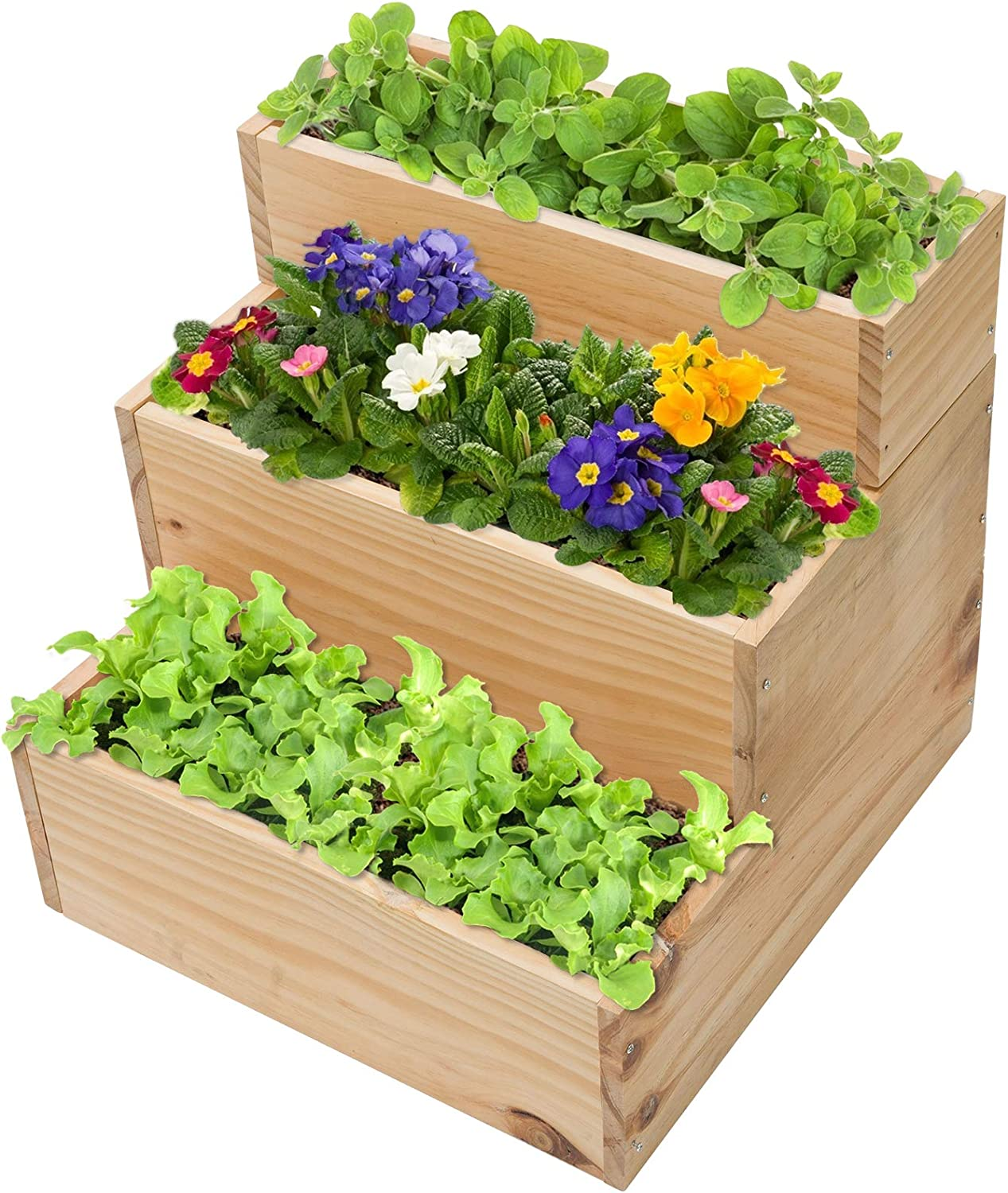 Limited time for free shipping 3 Tier Wooden Raised Attention brand Garden Bed- Eleva Small 16.5 Inch 16 ×
