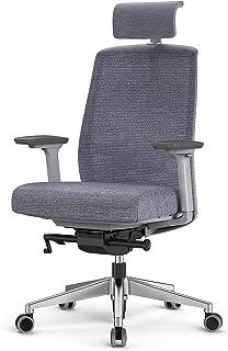 Duwinson Ergonomiczne krzesło biurowe, krzesło biurkowe z wysokim oparciem z funkcją blokady i leżenia, regulowany zagłówe...