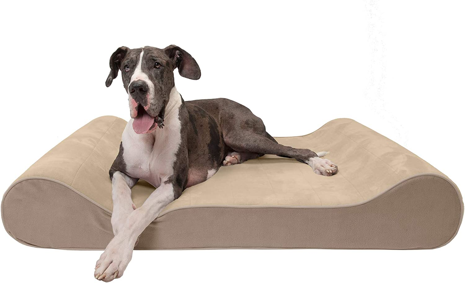Furhaven Animer and price revision Orthopedic Cooling Gel Tampa Mall Memory Pet for Beds Foam S