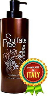 Moroccan Argan Oil Conditioner Sulfate Free - Best for Damaged, Dry, Curly or Frizzy Hair - Thickening for Fine / Thin Hair, Safe for Color-Treated, Keratin Treated Hair, Professional Line