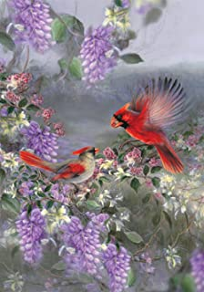 cardinal flower for sale