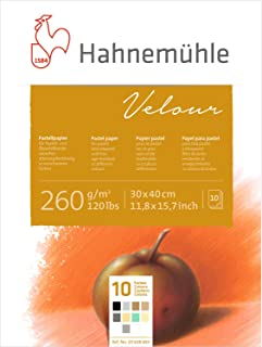 Hahnemuhle Pastel 10 Color Velour Pad 11.7x15.6 Inches 260gsm 10 Sheets