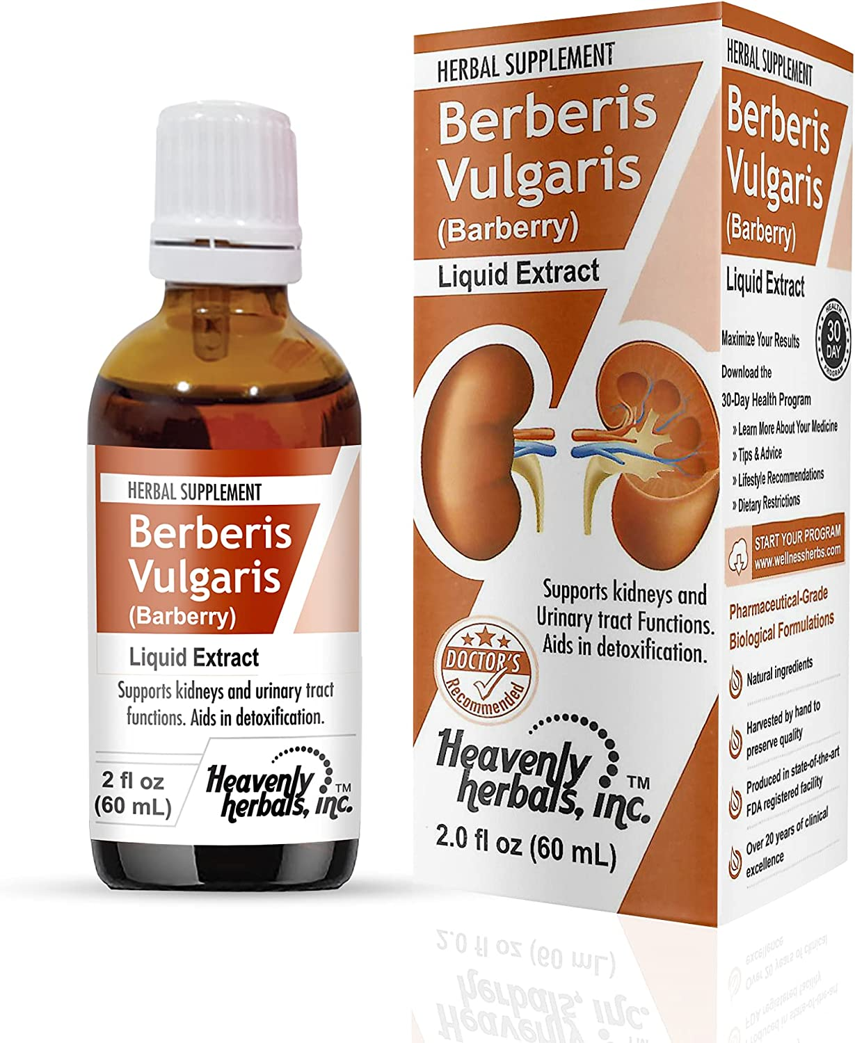 Stones Dissolver - Berberis Kidneys Supports Vulgaris Some Manufacturer direct delivery reservation Drops